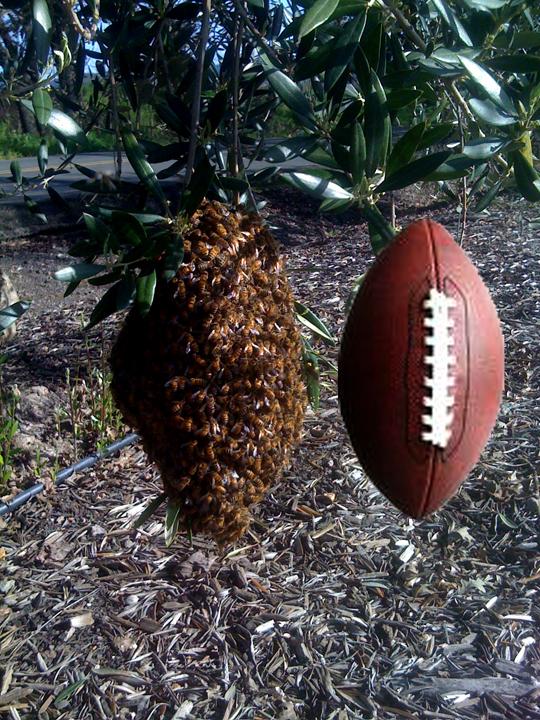 Football swarm